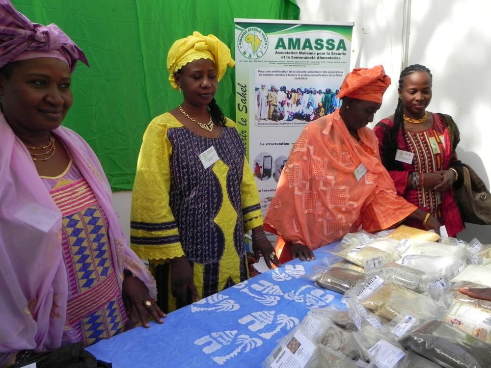 Bourse internationale aux céréales Ouaga, 12-2012, stand Amassa
