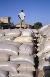 Stock de céréales au Sahel