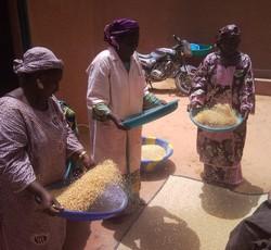 Unité Misola au Niger, à Doutchi