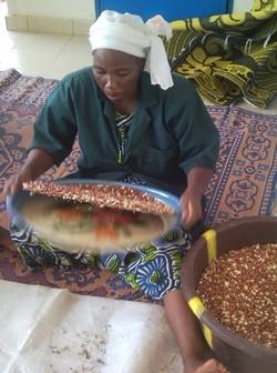 Unité Misola Doutchi, Niger, travail des arachides