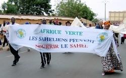 AMASSA - Afrique Verte au Forum social mondial de Bamako en 2006