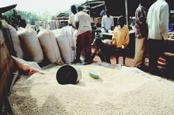 Céréales sur les marchés nigériens
